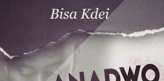 Bisa Kdei - Anadwo (Prod. by Apyah)