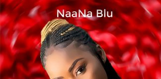 NaaNa Blu Sugar Cover Social Media
