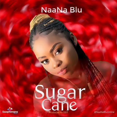 NaaNa Blu Sugar Cover Social Media