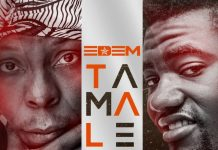Edem - Tamale (Feat. Optional King) (Prod. by ShottohBlinqx)