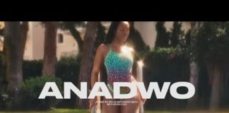 Sarkodie - Anadwo (Feat. King Promise) (Official Video)