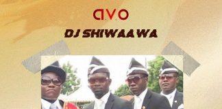 DJ Shiwaawa - Dada Awu (Prod By ParisBeatz) (GhanaNdwom.net)