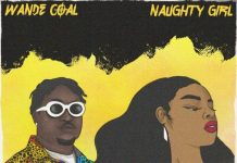 Wande Coal - Naughty Girl
