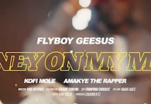 Flyboy Geesus - Money On My Mind (Feat. Kofi Mole & Amakye) (Official Video)