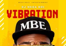 Dj Mega Boi - Vibration (Prod. by Steka) (GhanaNdwom.net)