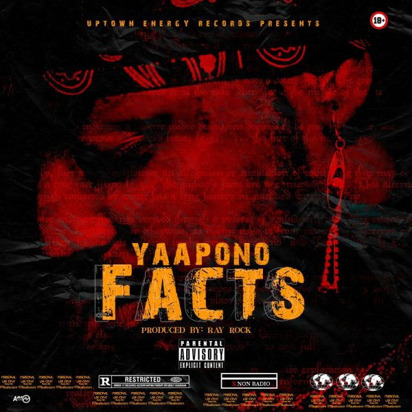 Yaa Pono – Facts (Shatta Wale, Samini, Tinny, Sarkodie Diss) (Prod. by Ray Rock)