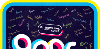 Dj Shiwaawa - Agoro (Feat. Adina Thembi)